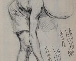 Comprendre le mouvement par l'anatomie
